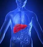 Limpiar el hígado para desintoxicar el organismo