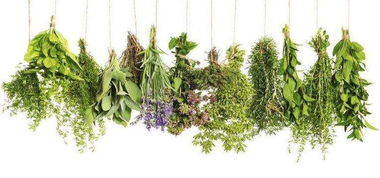 Limpia personal con atado de hierbas.