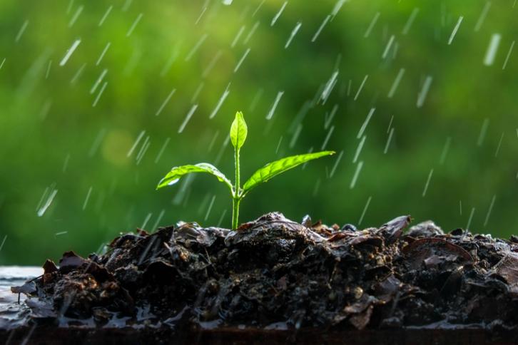 El agua de lluvia y sus usos mágicos